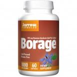 Biotin Extra Strength 10 mg (10.000 mcg) (120 Vegetarian Capsules) - Now Foods