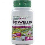 Herbal Actives - Boswellin 300 mg (60 Vegetarian Capsules) - Nature's Plus
