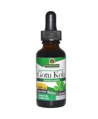Gotu Kola,  Alcohol-Free (30 ml) – Nature's Answer