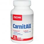 CarnitAll (90 Capsules) - Jarrow Formulas