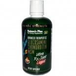 Advanced Therapeutics - Glucosamine Chondroitin MSM - Ultra Rx-Joint - Honey Lemon Flavor (887 ml) - Nature's Plus