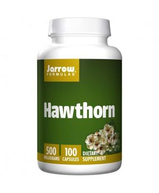 Hawthorn 500 mg (100 Capsules) - Jarrow Formulas