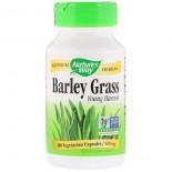 Cebada hierba joven cosecha 500 mg -  100 cápsulas - Nature's Way