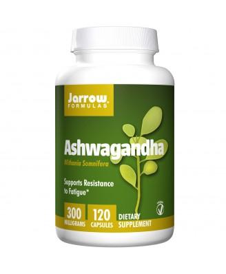 Ashwagandha 300 mg (120 Veggie Caps) - Jarrow Formulas